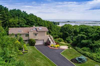 Port Jefferson Single Family Home For Sale: 123 Nadia Ct