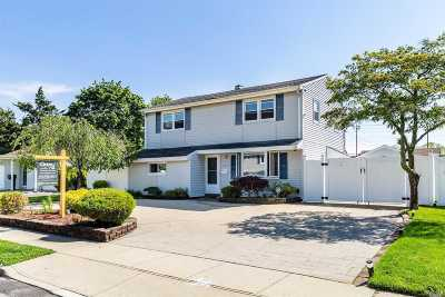 Bethpage Single Family Home For Sale: 4197 Ludwig Ln