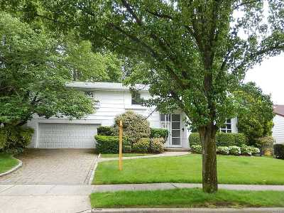 Plainview Single Family Home For Sale: 82 Country Dr