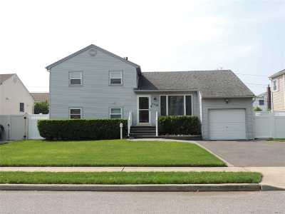 Seaford Single Family Home For Sale: 3560 Wadena St