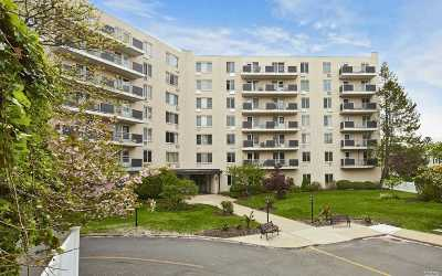 Westbury Condo/Townhouse For Sale: 135 Post Ave #5-G