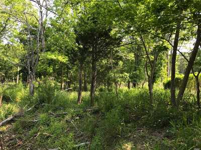 Mattituck Residential Lots & Land For Sale: 2300 Camp Mineola Rd