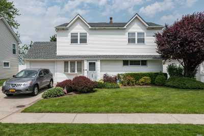 Westbury Single Family Home For Sale: 2207 Stewart Ave