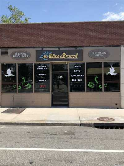 Nassau County Commercial For Sale: 640 Willis Ave