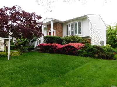 Valley Stream Single Family Home For Sale: 10 E Valley Lane East