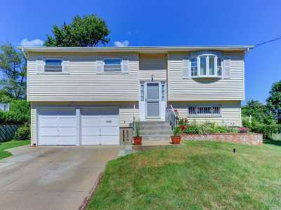 Brentwood Single Family Home For Sale: 569 Freeman Ave