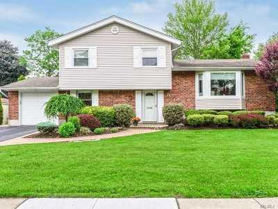Jericho Single Family Home For Sale: 71 Orange Dr