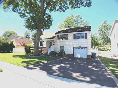 Wantagh Single Family Home For Sale: 1390 Gaston St