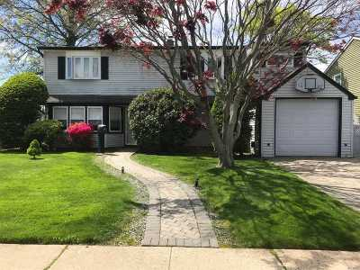 Levittown Single Family Home For Sale: 18 Hickory Ln