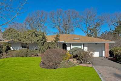 Jericho Single Family Home For Sale: 191 Birchwood Park