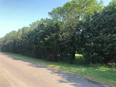Cutchogue Residential Lots & Land For Sale: 460 Duck Pond Rd