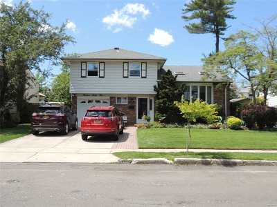 Wantagh Single Family Home For Sale: 1362 Blue Spruce Ln