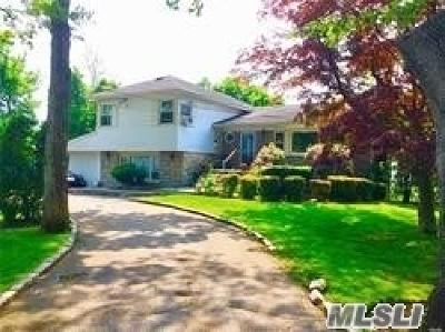 N. Bellmore Single Family Home For Sale: 1096 Little Neck Ave