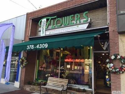 Nassau County Commercial For Sale: 54 Merrick Ave