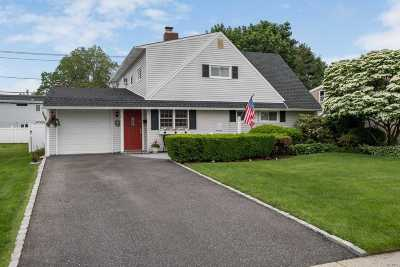 Wantagh Single Family Home For Sale: 308 Duckpond Dr