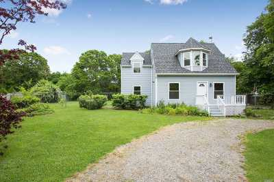 Mastic Single Family Home For Sale: 27 Strafford St