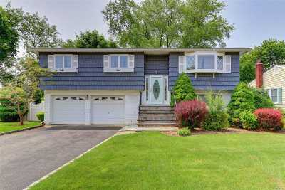 Bethpage Single Family Home For Sale: 16 Parma Dr
