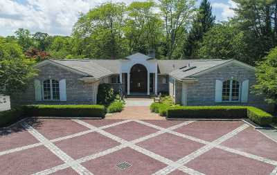 Old Westbury Single Family Home For Sale: 16 Applegreen Dr