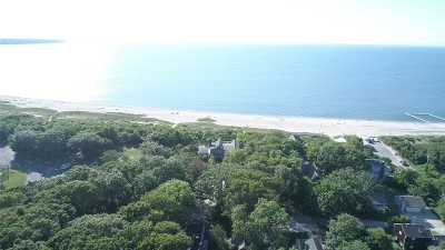 East Hampton Single Family Home For Sale: 7 Whitby Ln