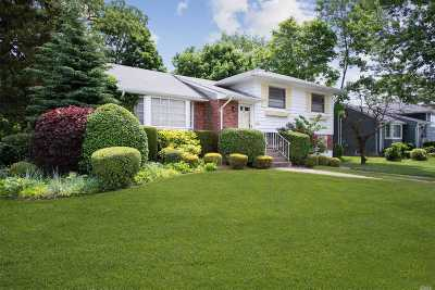 Deer Park NY Single Family Home For Sale: $379,000