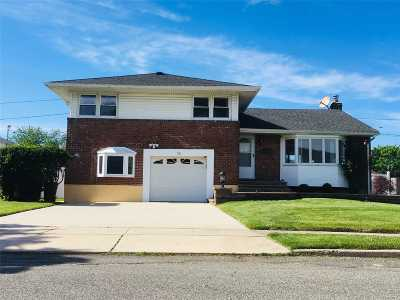 Syosset Single Family Home For Sale: 16 Ingram Drive