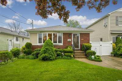 Massapequa Single Family Home For Sale: 253 N Delaware Ave