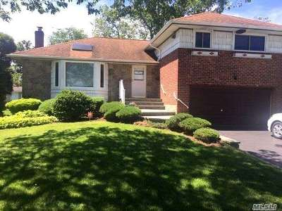 Syosset Single Family Home For Sale: 19 Market Dr