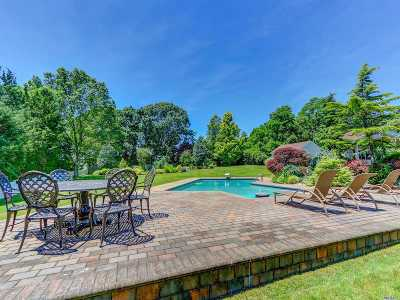 Dix Hills Single Family Home For Sale: 33 Lucille Ln