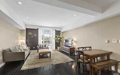 Astoria Condo/Townhouse For Sale: 30-11 21st St #2C