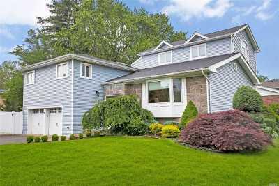 Jericho Single Family Home For Sale: 19 Putnam Ave