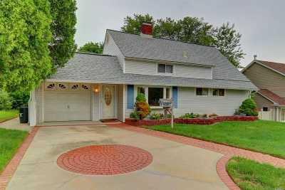 Levittown Single Family Home For Sale: 57 Hamlet Rd