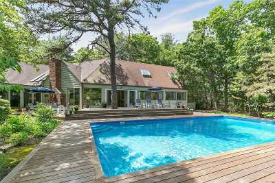 East Hampton Single Family Home For Sale: 29 S Breeze Dr