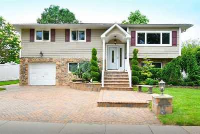 Bethpage Single Family Home For Sale: 53 Silber Ave