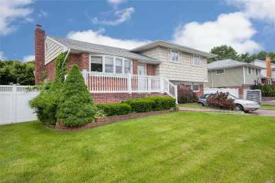Farmingdale Single Family Home For Sale: 19 Maynard Dr