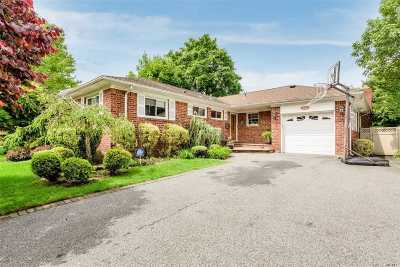 Plainview Single Family Home For Sale: 54 Randy Ln
