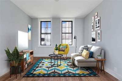 Brooklyn Multi Family Home For Sale: 223 Rockaway Ave