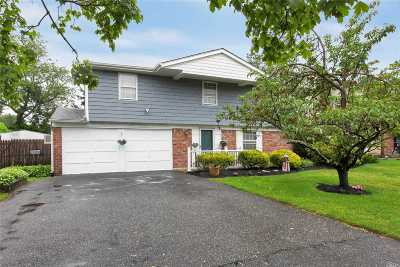 Lake Grove Single Family Home For Sale: 9 Mosby Dr