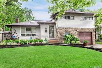 East Meadow Single Family Home For Sale: 678 Richmond Rd