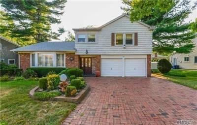 Manhasset Hills Single Family Home For Sale: 41 Meadowfarm Rd