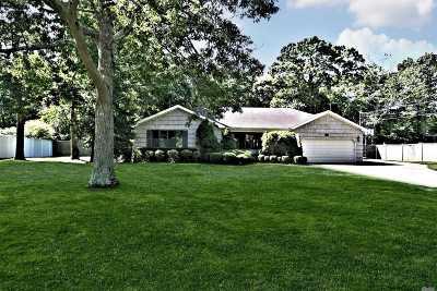 East Islip Single Family Home For Sale: 19 Sandpiper Ln