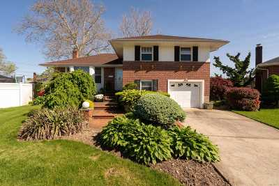 Bethpage Single Family Home For Sale: 3794 Oatty Ct