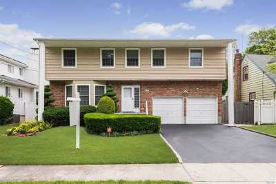 East Meadow Single Family Home For Sale: 759 Bethlynn Ct