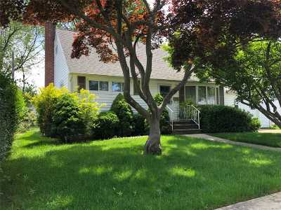 Bethpage Single Family Home For Sale: 27 Carrie Ave