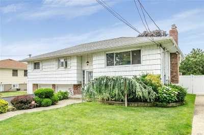 Bellmore Single Family Home For Sale: 2820 Maple Ave