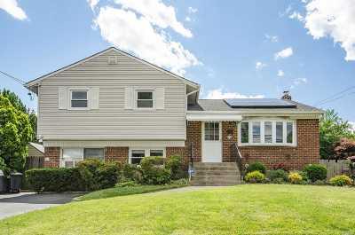 Hicksville Single Family Home For Sale: 22 Monroe Ave