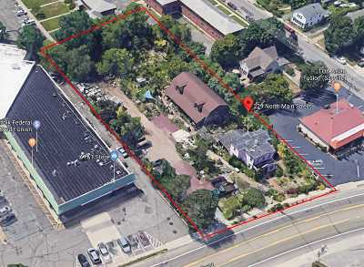 Sayville Commercial For Sale: 229 N Main St