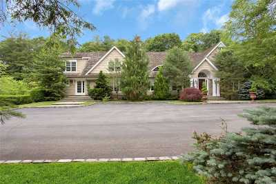 Old Westbury Single Family Home For Sale: 46 Morgan Dr