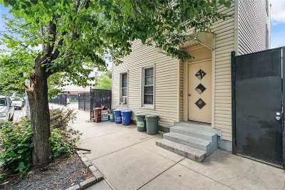 Brooklyn Multi Family Home For Sale: 113 Eagle St