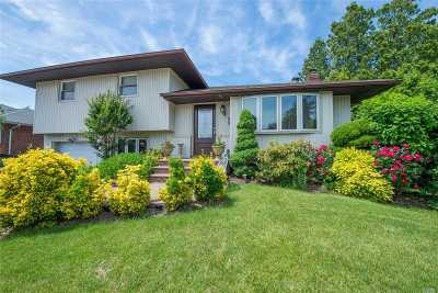 Plainview Single Family Home For Sale: 11 Lex Ave