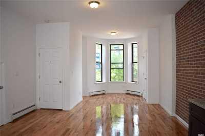Brooklyn Rental For Rent: 461 45th St #2